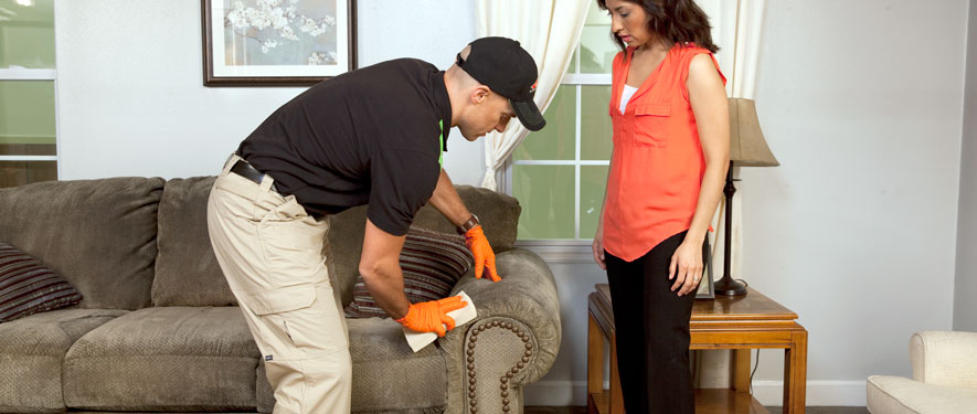 Palo Alto, CA carpet upholstery cleaning